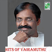 Hits of Vairamuthu by Various Artists