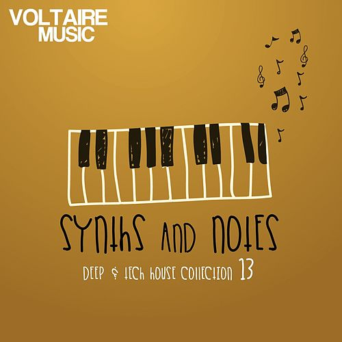 Synths And Notes, Vol. 13 (Deep & Tech House Collection) by Various Artists