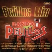 Play & Download Pelillos Mix by Banda Pelillos | Napster