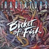 Play & Download Bucket of Fish by The Radiators | Napster