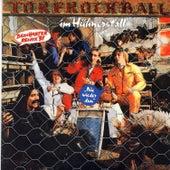 Play & Download Torfrockball im Hühnerstall by Torfrock | Napster