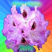 Play & Download Essence of Spring by Iasos | Napster