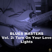 Blues Masters, Vol. 2: Turn On Your Love Lights von Various Artists