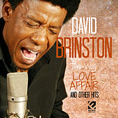 Two Way Love Affair and Other Hits by David Brinston