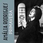 Quando Os Outros Batem von Amalia Rodrigues