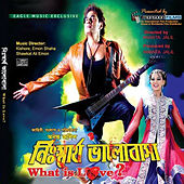 Nisshartho Bhalobasha What is Love? (OST) by Various Artists