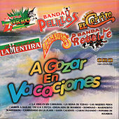 Play & Download A Gozar en Vacaciones by Various Artists | Napster