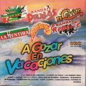 A Gozar en Vacaciones by Various Artists