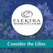 Play & Download Consider the Lilies by Elektra Women's Choir | Napster