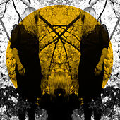Feel It Break by Austra