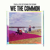 We the Common by Thao and the Get Down Stay Down