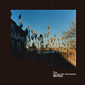 Play & Download Ma Fleur by Cinematic Orchestra | Napster
