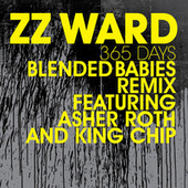 365 Days by ZZ Ward