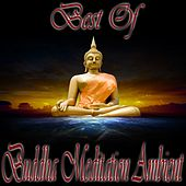 Play & Download Best of Buddha Meditation Ambient (Tantra Lounge and Kamasutra Chill Out) by Various Artists | Napster