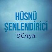 Play & Download Dünya (Enstrümantal) by Hüsnü Şenlendirici | Napster