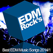 EDM Rock's Best EDM Music Songs 2014 - 1 by Various Artists
