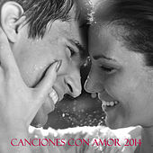Canciones Con Amor 2014 by Various Artists