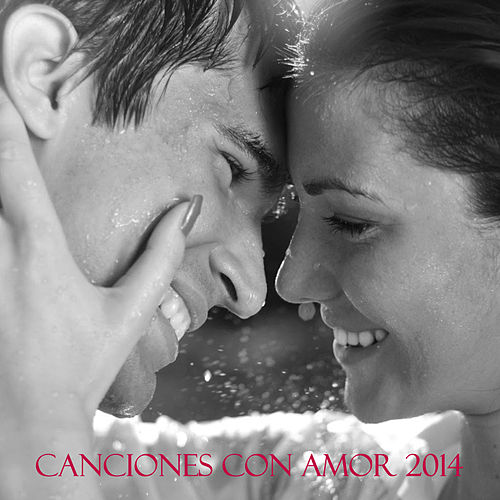 Play & Download Canciones Con Amor 2014 by Various Artists | Napster