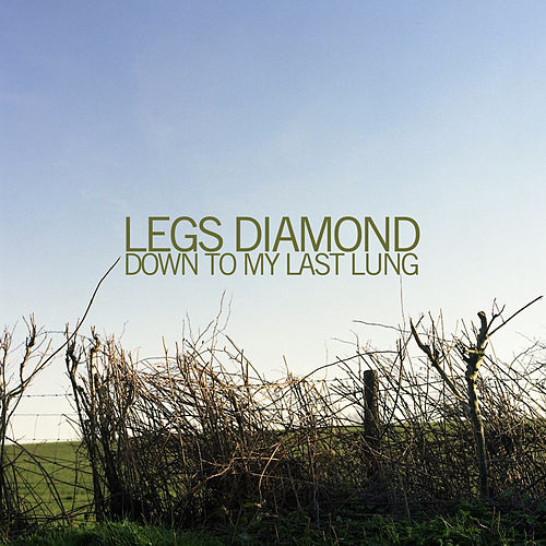 Play & Download Down to My Last Lung by Legs Diamond | Napster