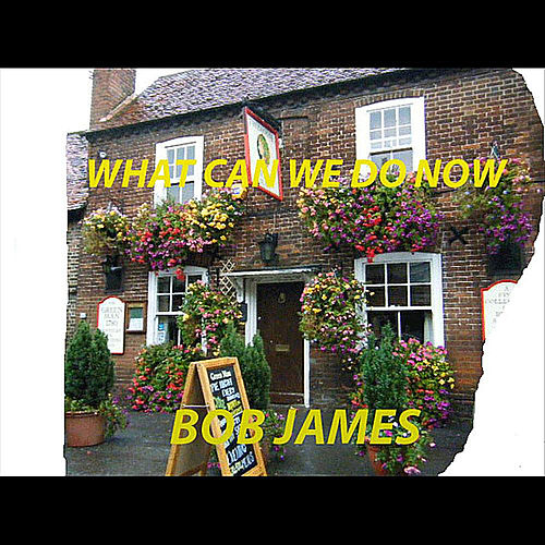 Play & Download What Can We Do Now - Single by Bob James | Napster