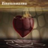 Play & Download Indagine su un sentimento by Tiromancino | Napster