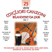 Play & Download 25 delle Migliori Canzoni Irlandese Da Pub, Vol. 1 by Various Artists | Napster