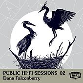 Play & Download Public Hi-Fi Sessions 02 by Dana Falconberry | Napster