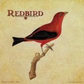 Play & Download Redbird by Redbird | Napster