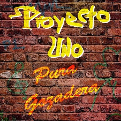 Play & Download Pura Gozadera by Proyecto Uno | Napster