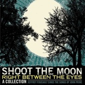 Shoot The Moon Right Between The Eyes by Jeffrey Foucault