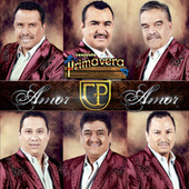 Play & Download Amor Amor by Conjunto Primavera | Napster