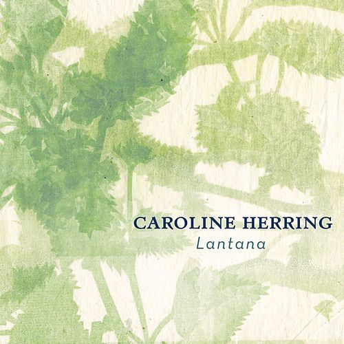 Lantana by Caroline Herring