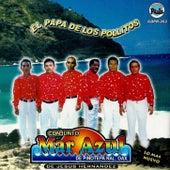 Play & Download El Papa De Los Pollitos by Mar Azul | Napster