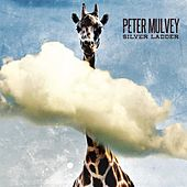 Silver Ladder by Peter Mulvey