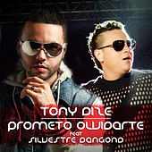 Prometo Olvidarte by Tony Dize
