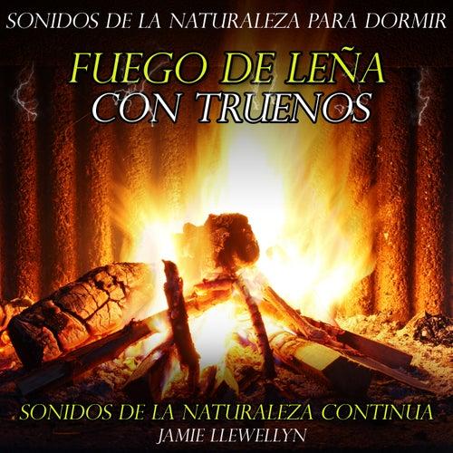 Sonidos de la Naturaleza para Dormir: Fuego de Leña Con Truenos by Jamie Llewellyn