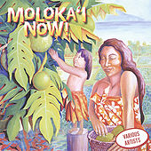 Play & Download Molokai Now by Various Artists | Napster