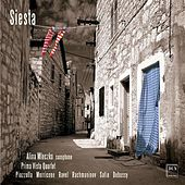 Play & Download Siesta by Alina Mleczko | Napster