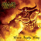 Where Angels Weep by Vader