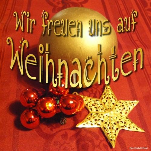 Play & Download Wir freuen uns auf Weihnachten by Various Artists | Napster