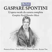 Play & Download Spontini: L'Opera vocale da camera completa by Various Artists | Napster