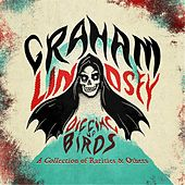 Digging Up Birds: A Collection of Rarities & Others by Graham Lindsey