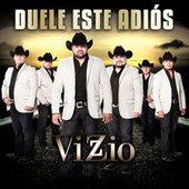 Duele Este Adiós by Vizzio