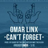 Can't Forget by Omar LinX