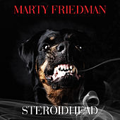 Play & Download Steroidhead by Marty Friedman | Napster