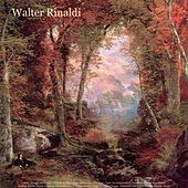 Play & Download Bach: Toccata and Fugue - Pachelbel: Canon in D - Beethoven: Fur Elise - Liszt: La Campanella - Chopin: Waltzes & Impromptu - Sinding: Rustle of Spring - Mendelssohn: Wedding March - Wagner: Bridal Chorus - Schubert: Ave Maria - Walter Rinaldi: Works by Walter Rinaldi | Napster