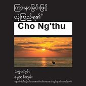 Play & Download Cho Ng'thu New Testament (Dramatized) Common Langauage Version - Chin Tiddim Bible by The Bible | Napster