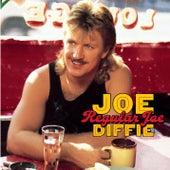 Regular Joe by Joe Diffie