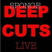 Deep Cuts Live by Sponge
