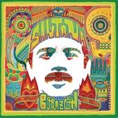 Iron Lion Zion (feat. Ziggy Marley) von Santana
